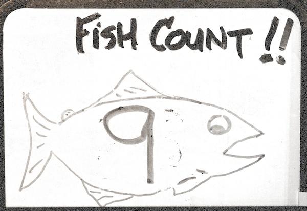 fishcount9-600